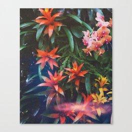 Fantasia SS16 Canvas Print
