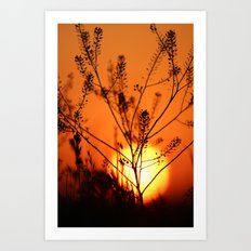 Goodnight Sun Art Print