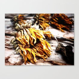 Faded Away Canvas Print