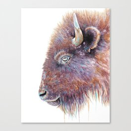 """Spirit of the West"" Buffalo Watercolor Canvas Print"