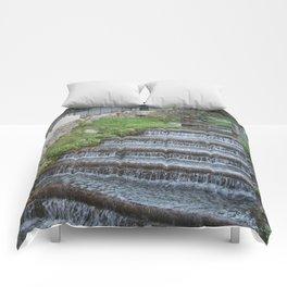 Wet downstairs Comforters