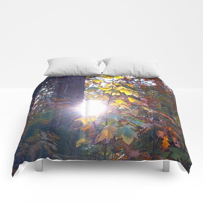 The Light Shines Through Comforters