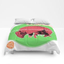 DASYPODIDAE Comforters