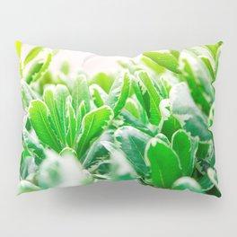 Nature photography garden II Pillow Sham