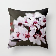 Signs of Spring 2 Throw Pillow