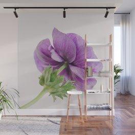 Purple Anemone Side View Wall Mural