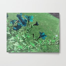 outside flowers blue Metal Print