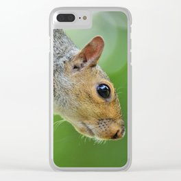 Closeup of a Cute Squirrel Clear iPhone Case