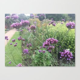 Flower garden #2 Canvas Print