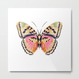 Butterfly Study no. 14 - butterfly art, watercolor butterfly, watercolor butterflies, painted butterfly, butterfly art, pink and yellow butterfly Metal Print