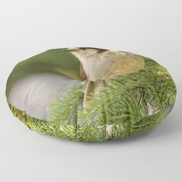 Profile of a Grey Jay / Whiskeyjack Floor Pillow