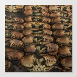 I Got Crabs  Canvas Print