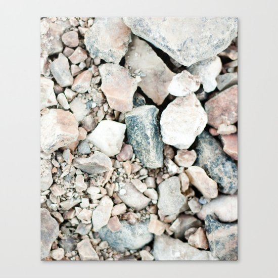 Stone Cold Fox Canvas Print