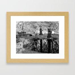 Serene Reflections Framed Art Print