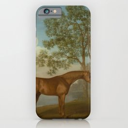 George Stubbs - Pumpkin with a Stable-lad iPhone Case