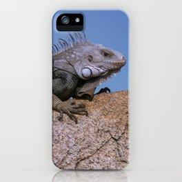 Iguana from Aruba iPhone Case