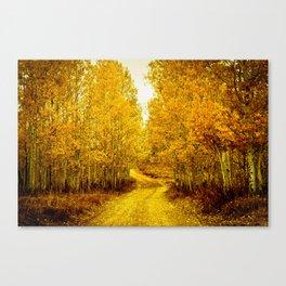 Falls Road Canvas Print