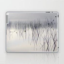 Waiting for the night Laptop & iPad Skin