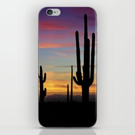 A Desert Rainbow iPhone Skin