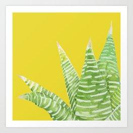 Green Mix Cactus Art Print