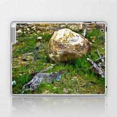 The Amazon Rock - Amazon, Brazil Laptop & iPad Skin