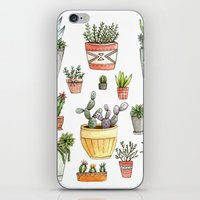 succulents iPhone & iPod Skins featuring Potted Succulents by Brooke Weeber