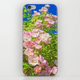 Sun Soaked Roses iPhone Skin