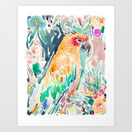 SYBIL the Sun Conure Art Print