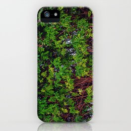 Beautiful Boundaries iPhone Case