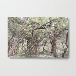 Trees at Sacsayhuaman Metal Print