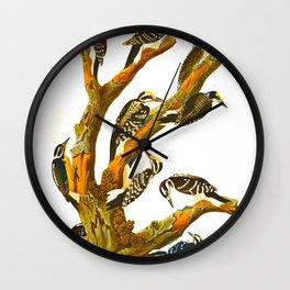 Maria's Woodpecker, Three-toed Woodpecker, Phillips' Woodpecker, Canadian Woodpecker, Harris's Woodp Wall Clock