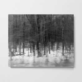 Winter Forest – Black and White Photograph by Tasha Johnson Metal Print