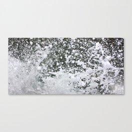 watersplash Canvas Print