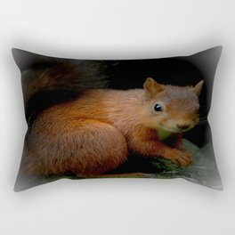 Red Squirrel Rectangular Pillow