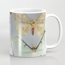 The Butterfly Collection Coffee Mug