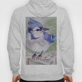 BEAUTIFUL BLUE BIRD Hoody