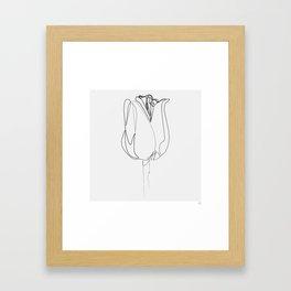 """Botanical Collection"" - Tulip Flower Print Framed Art Print"
