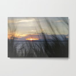 Grasses and Sunset Metal Print