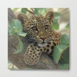 Leopard Cub - Tree Hugger Metal Print