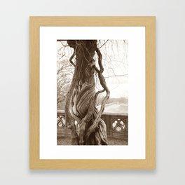 Beautifully Twisted Framed Art Print