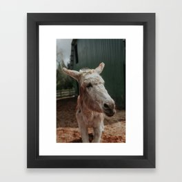 Baby in Bloom I Framed Art Print