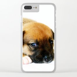 Bailey 2 Clear iPhone Case