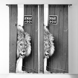 Beware of Dog black and white photograph of attack lion humorous black and white photography Blackout Curtain