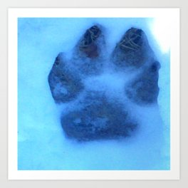 Snow Paw Art Print