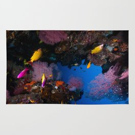 Tropical Fish Great Barrier Reef Coral Sea Rug