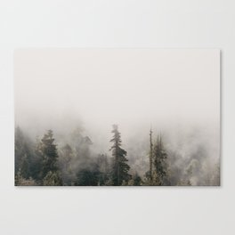 Forbidden Forest - Wanderlust Nature Photography Canvas Print