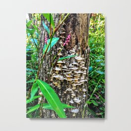 Mushroom Tree Color Metal Print