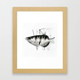 Tag on Fish Framed Art Print