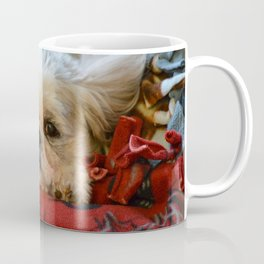 """Denali"" - Lap Dog Coffee Mug"