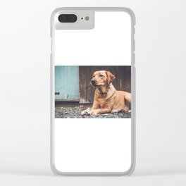 Miss Penny Clear iPhone Case